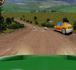 Rally-Stage-2014-1-a